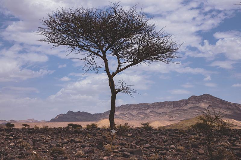 5 magnifiques road trips en Afrique (Maroc, Namibie, Afrique du Sud…)