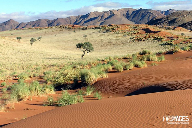 Roadtrip en Namibie