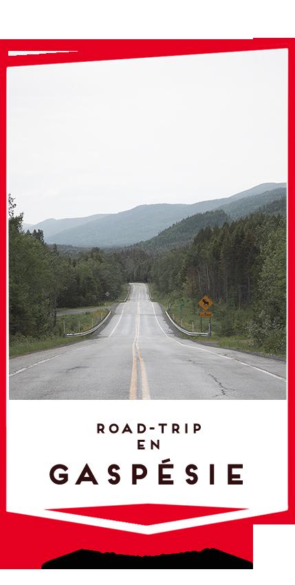 road trip en gaspesie