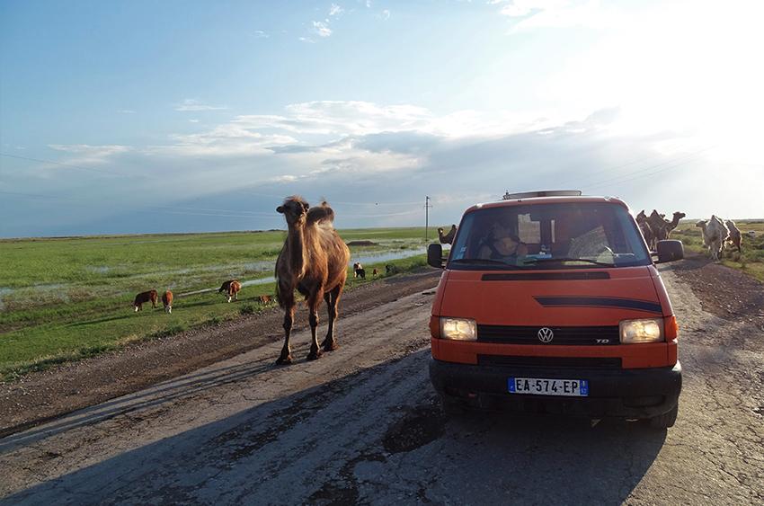 roadtrip kazakhstan