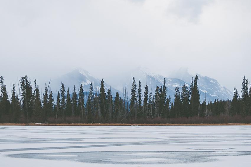 Road trip au Canada : l'aventure sur les routes canadiennes