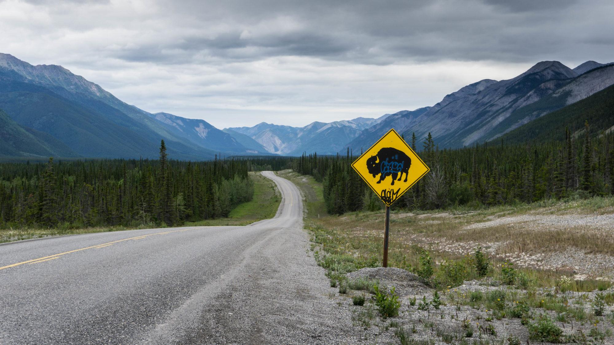 Cap vers le Nord pour un road trip sur l'Alaska Highway