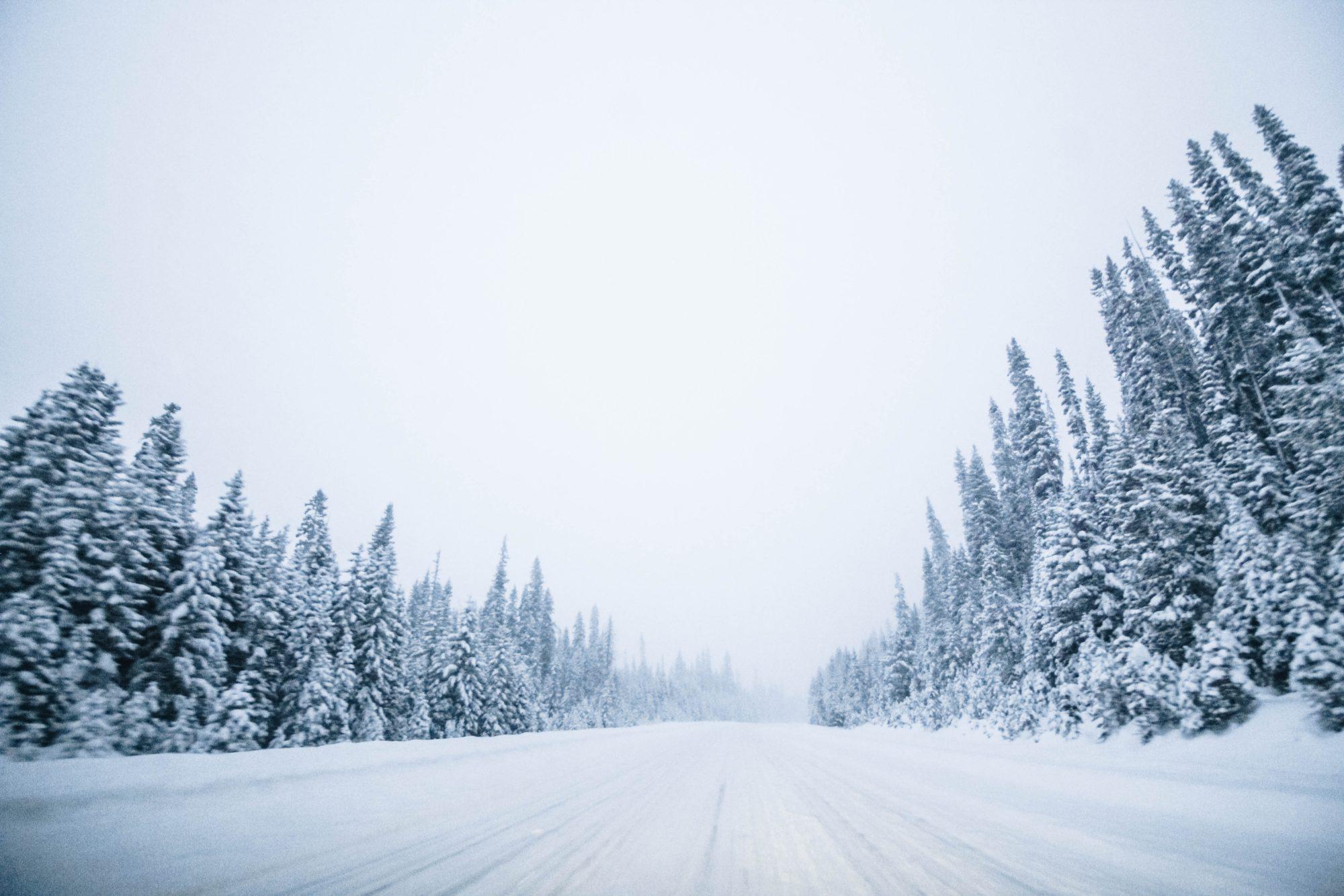 Choisir son agence de location pour un Road-trip au Québec